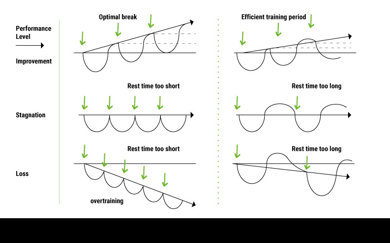 A set of infographics describing curves of improvement, stagnation and loss depending on whether the body is given too little rest, the right amount, or too long of a rest period.